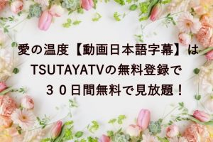 愛の温度【動画日本語字幕】はTSUTAYATVの無料登録で30日間無料で見放題!